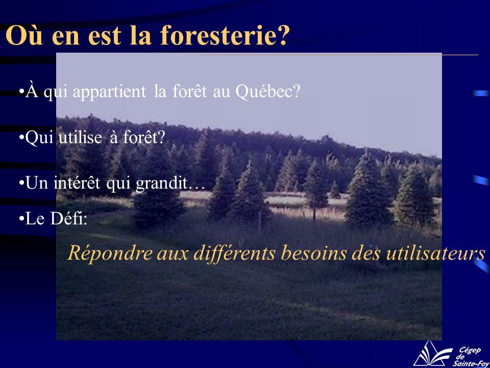 Où en est la foresterie À qui appartient la forêt au Québec