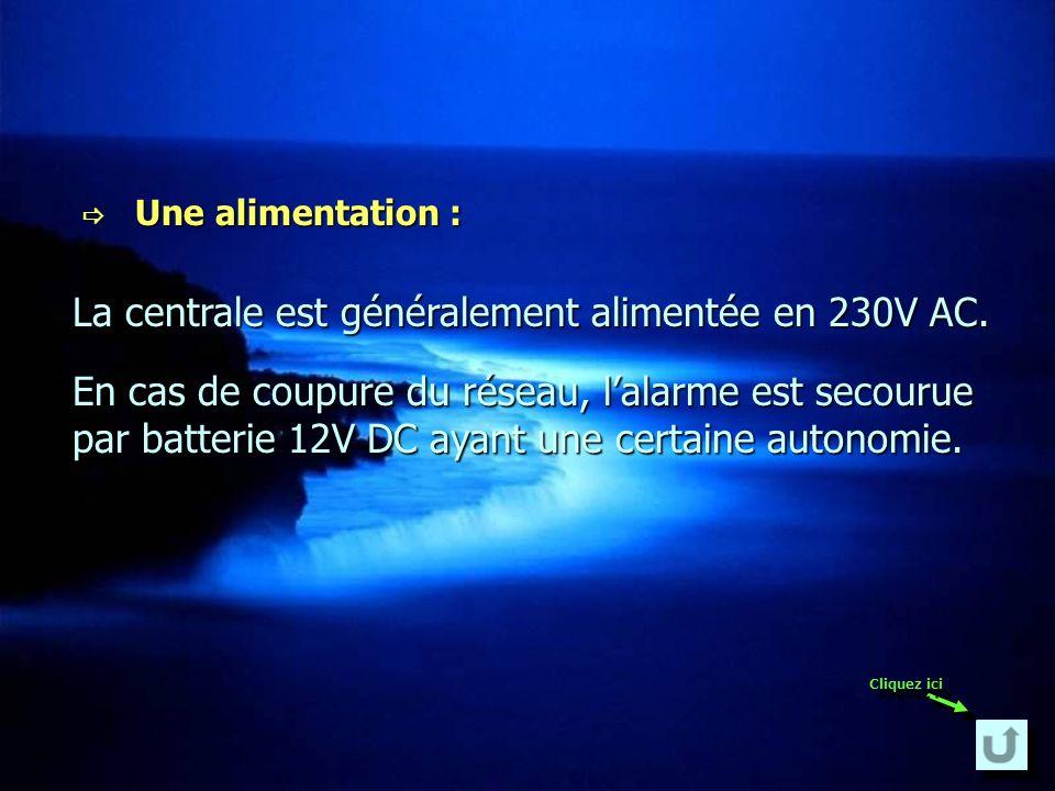 La centrale est généralement alimentée en 230V AC.