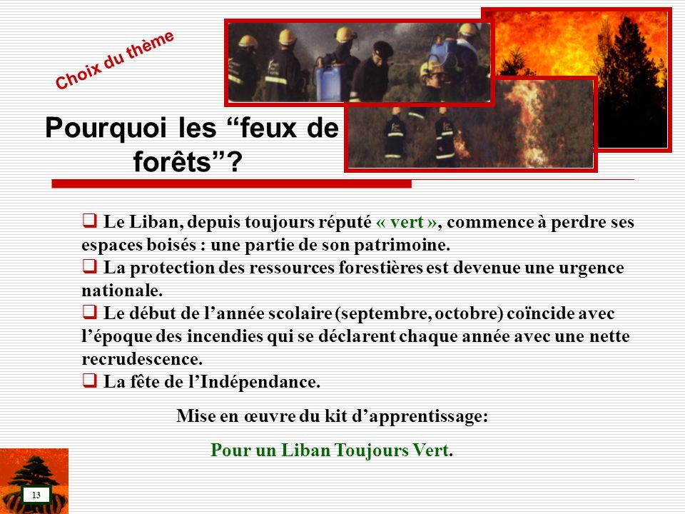 Pourquoi les feux de forêts