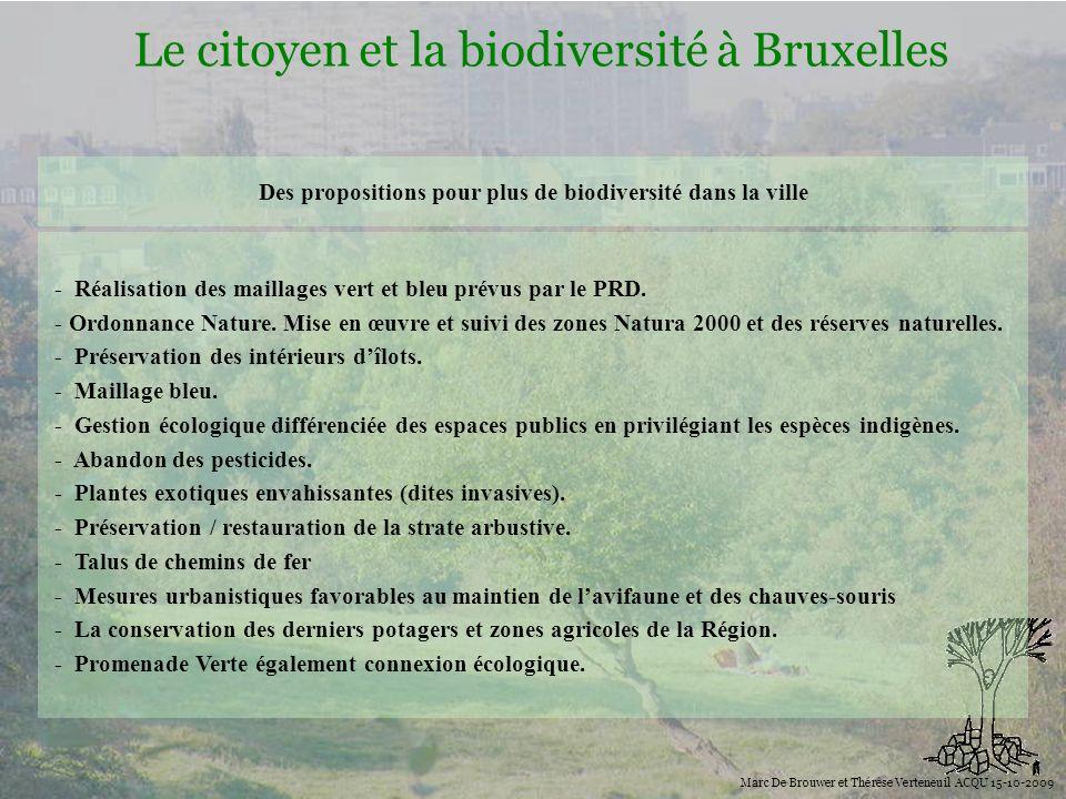 Des propositions pour plus de biodiversité dans la ville