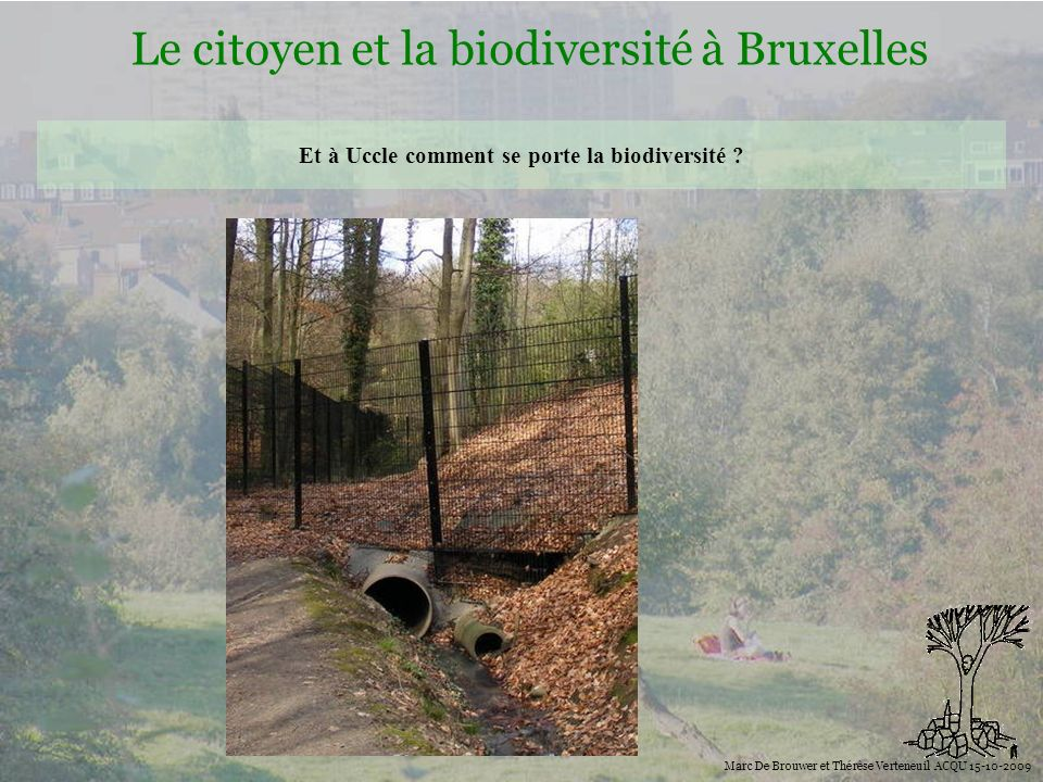 Et à Uccle comment se porte la biodiversité