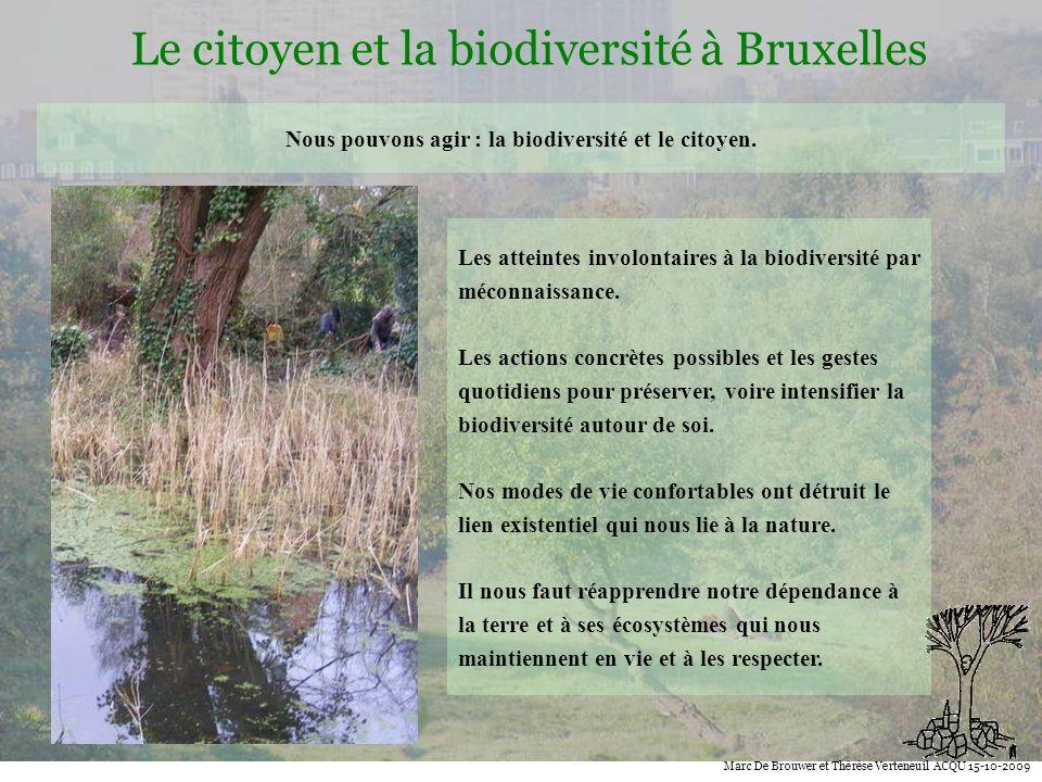 Nous pouvons agir : la biodiversité et le citoyen.