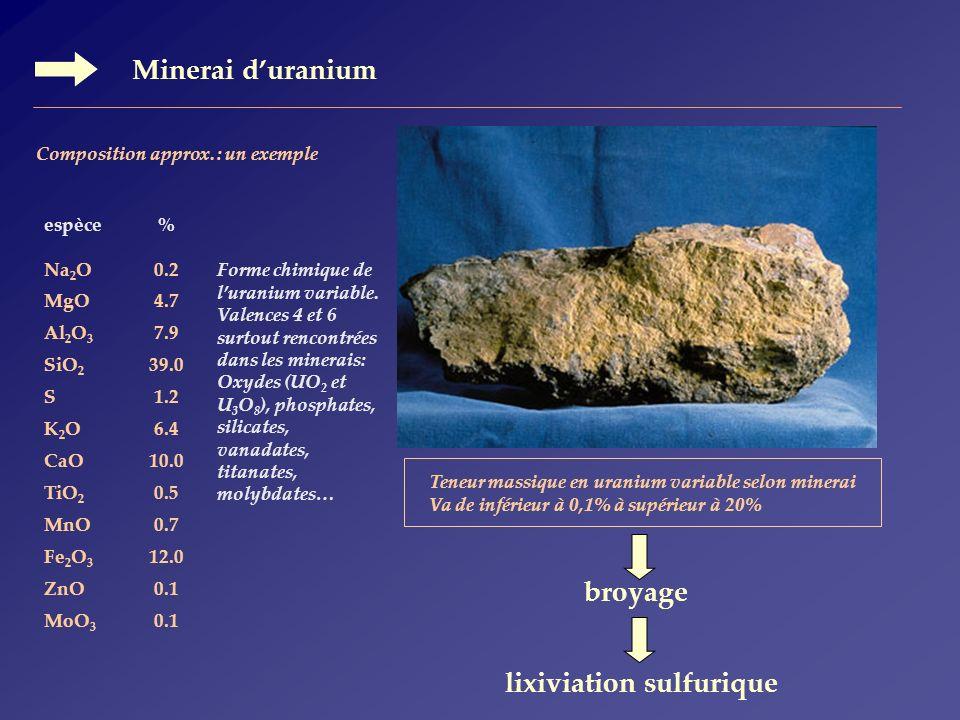 lixiviation sulfurique