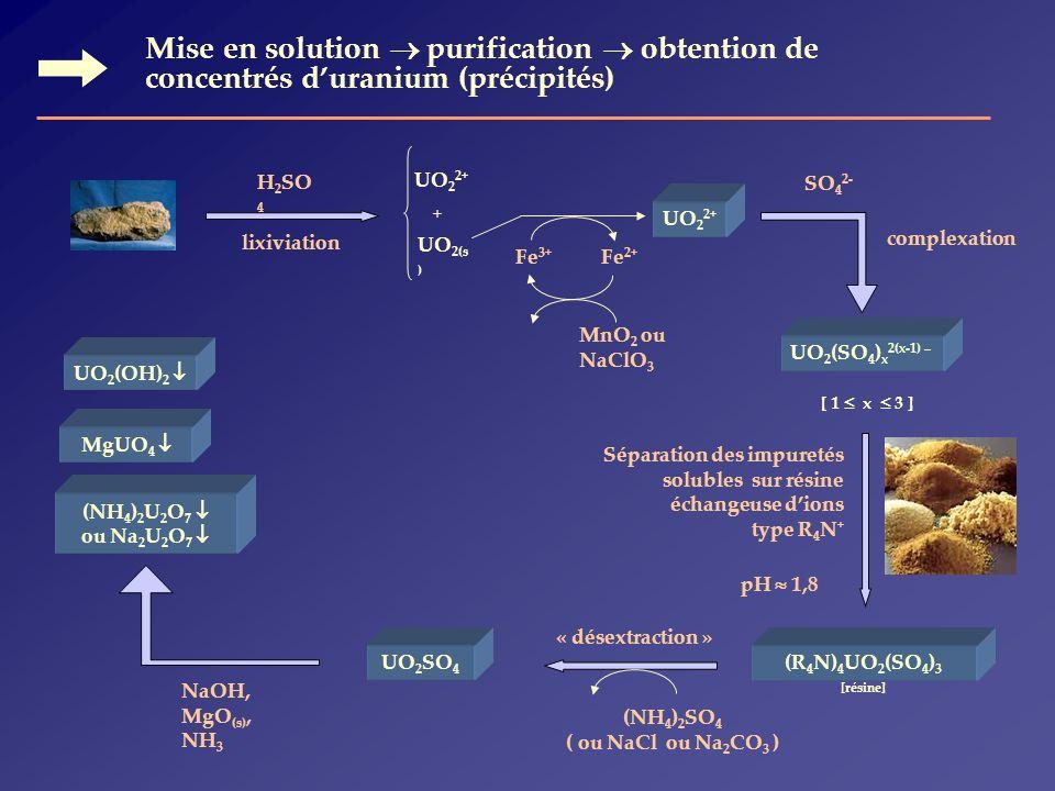 Mise en solution  purification  obtention de concentrés d'uranium (précipités)