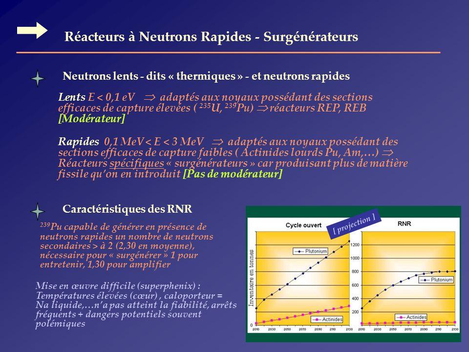 Réacteurs à Neutrons Rapides - Surgénérateurs