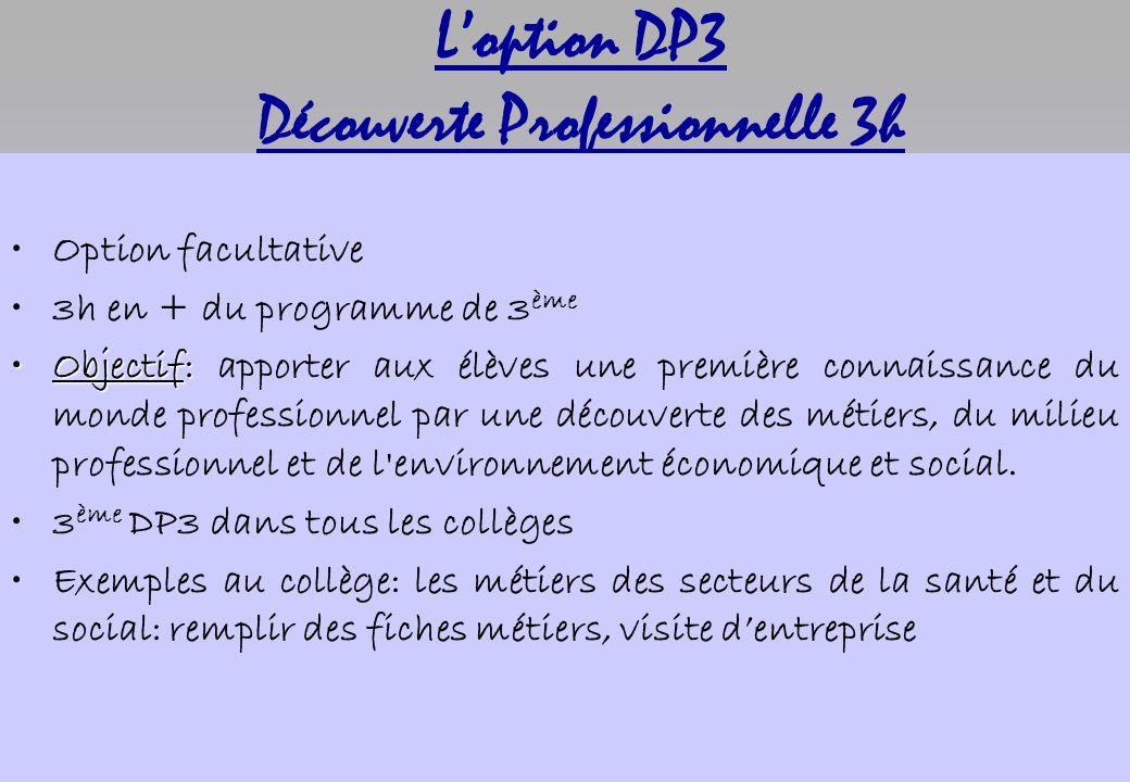 L'option DP3 Découverte Professionnelle 3h