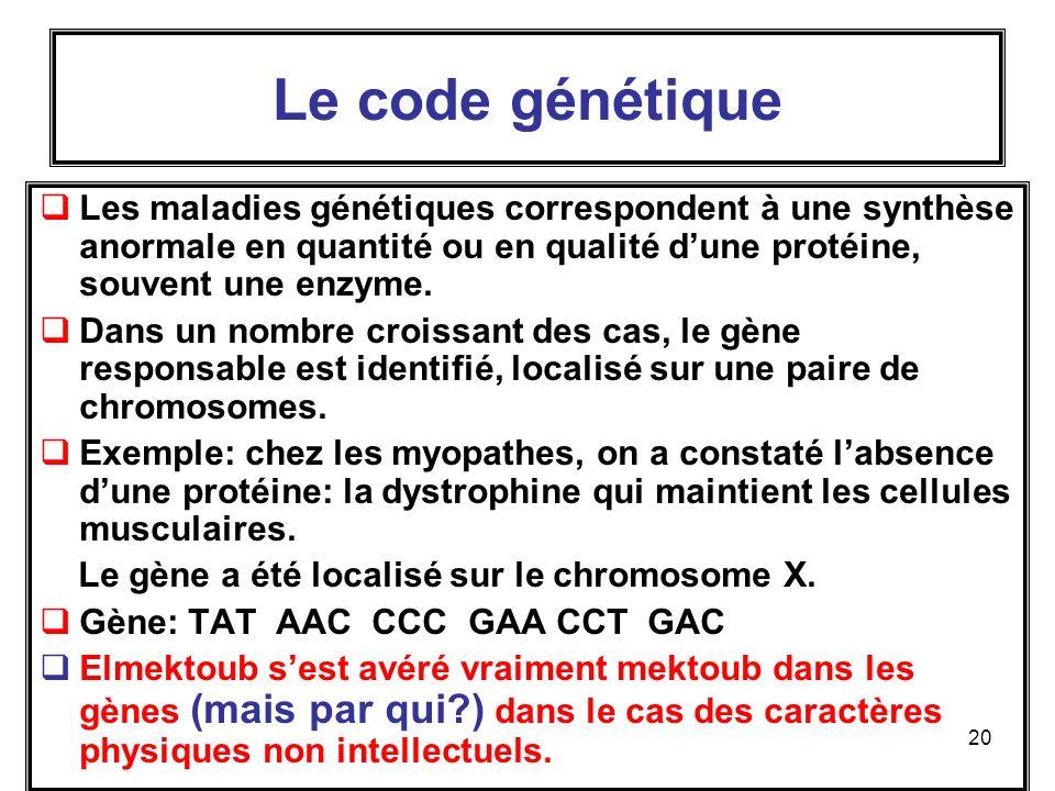 Le code génétique Les maladies génétiques correspondent à une synthèse anormale en quantité ou en qualité d'une protéine, souvent une enzyme.