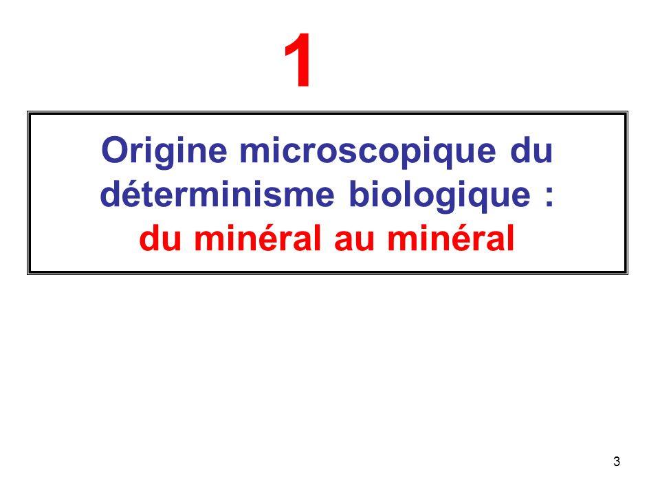 1 Origine microscopique du déterminisme biologique : du minéral au minéral