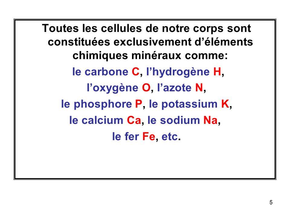 le carbone C, l'hydrogène H, l'oxygène O, l'azote N,