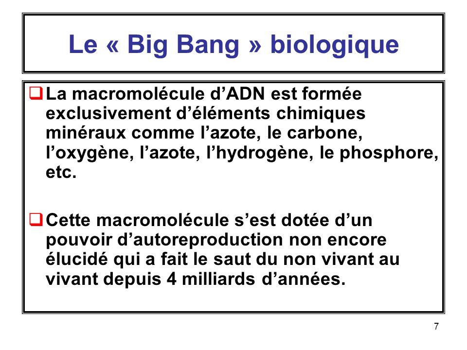 Le « Big Bang » biologique