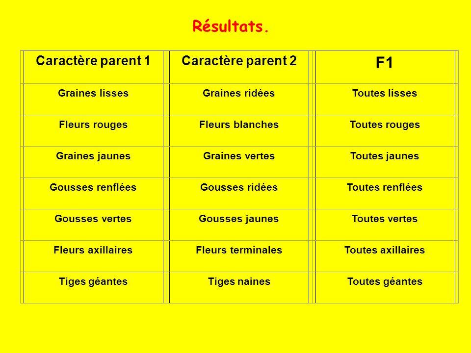 Résultats. F1 Caractère parent 1 Caractère parent 2 Graines lisses
