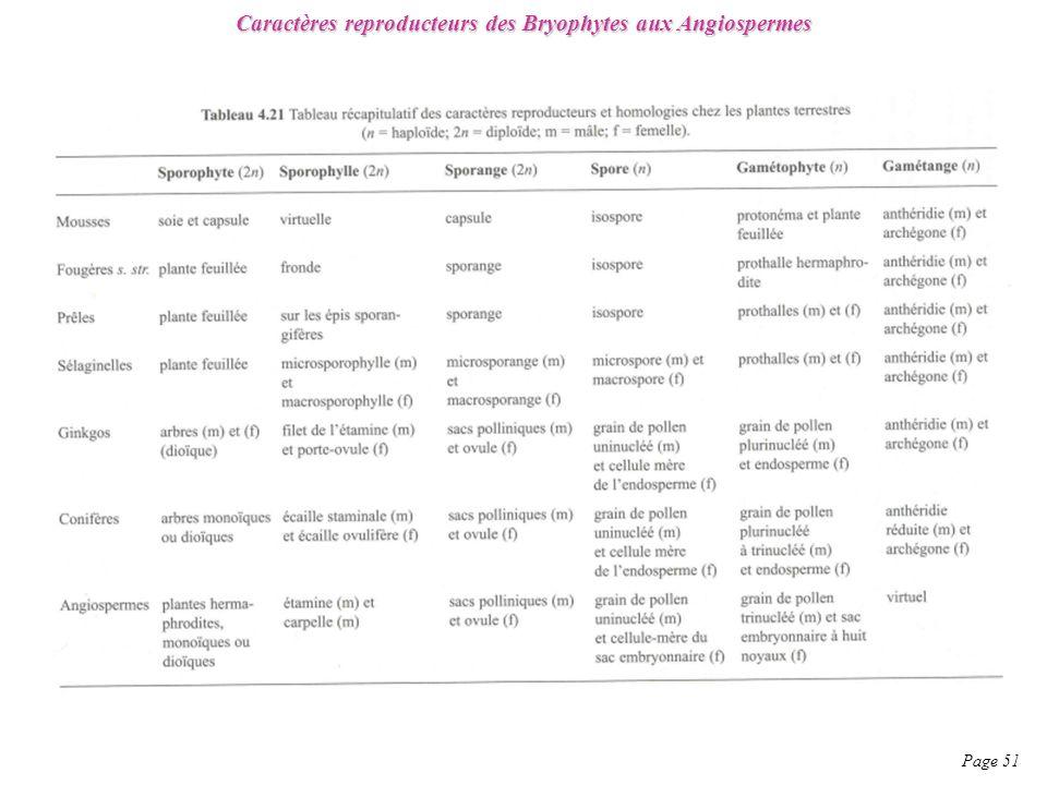 Caractères reproducteurs des Bryophytes aux Angiospermes