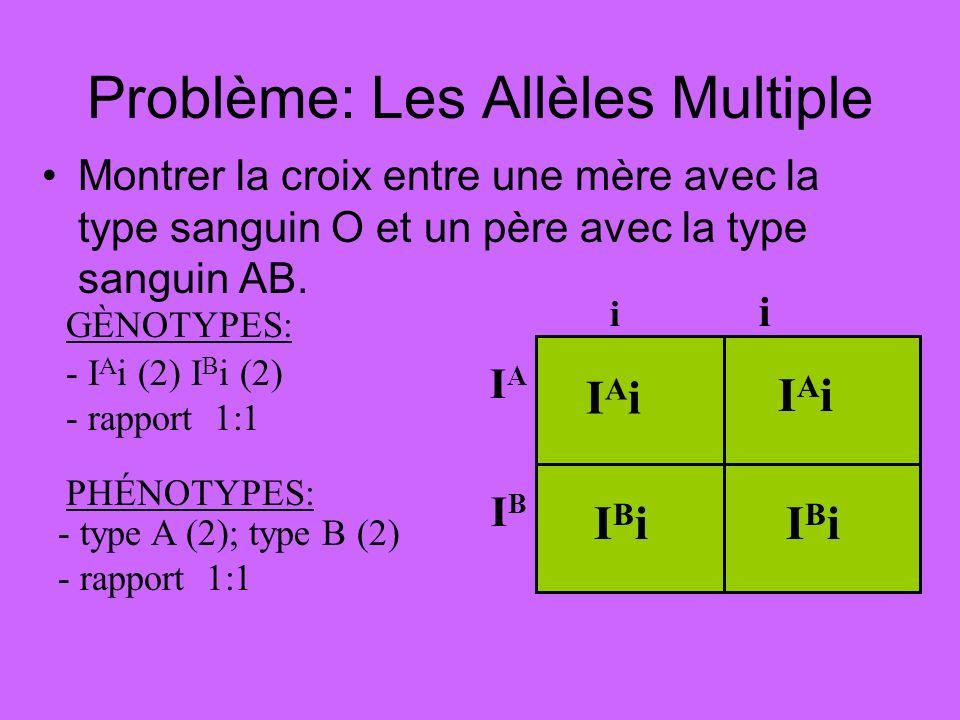 Problème: Les Allèles Multiple