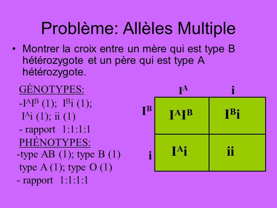 Problème: Allèles Multiple