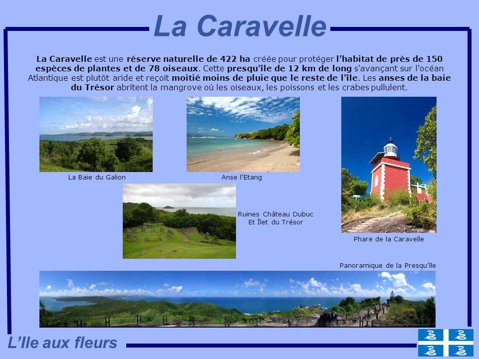 Panoramique de la Presqu'île