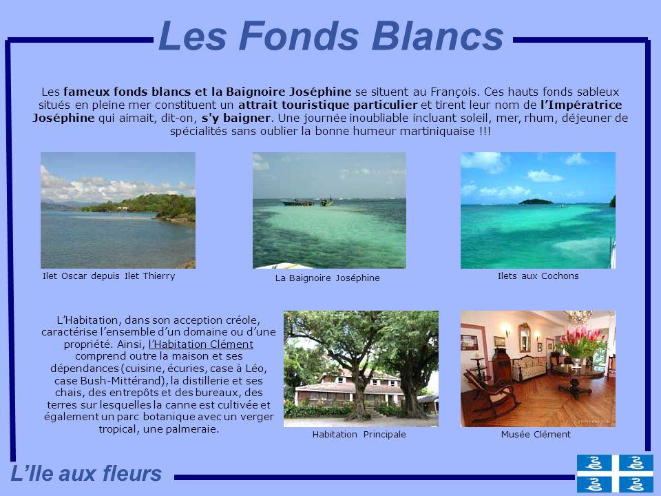 Les Fonds Blancs L'Ile aux fleurs
