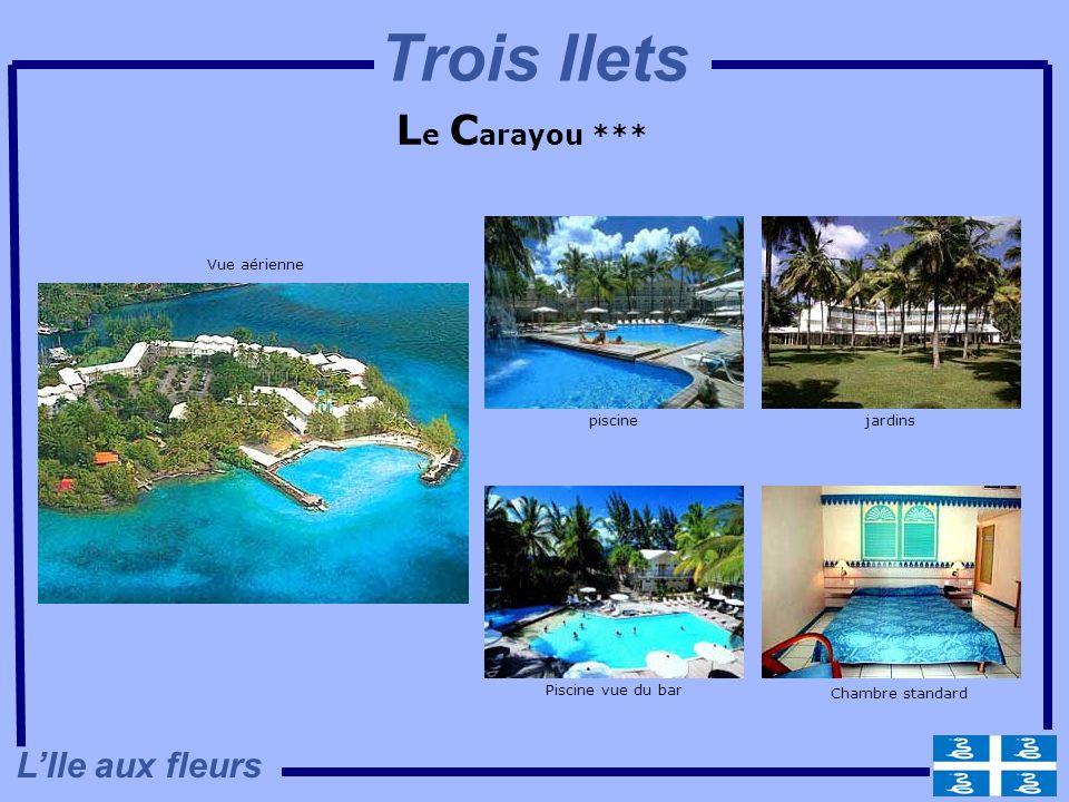 Trois Ilets Le Carayou *** L'Ile aux fleurs Vue aérienne piscine
