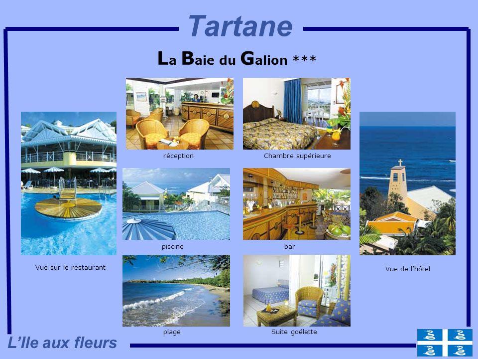 Tartane La Baie du Galion *** L'Ile aux fleurs réception
