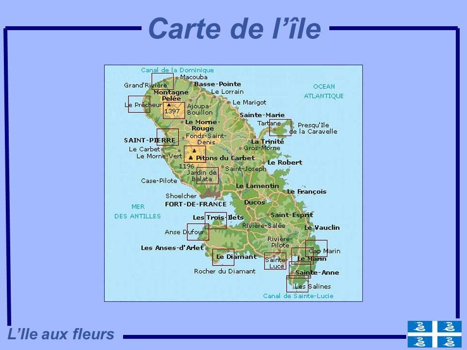 Carte de l'île L'Ile aux fleurs