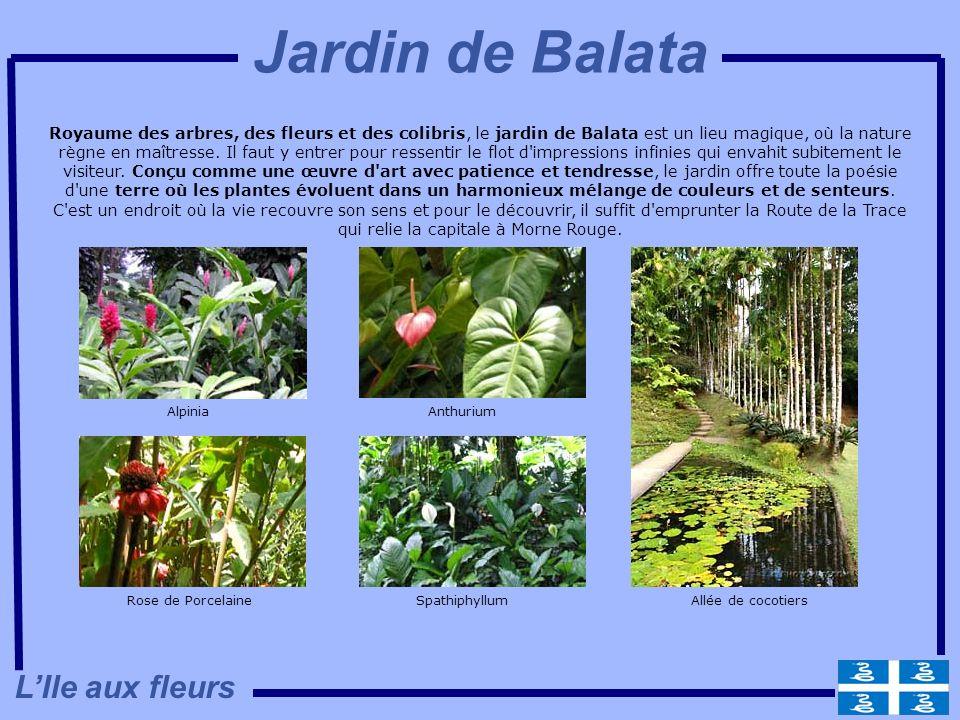 Jardin de Balata L'Ile aux fleurs