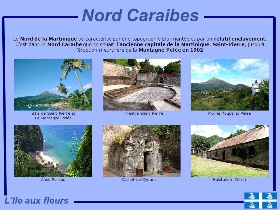Nord Caraibes L'Ile aux fleurs