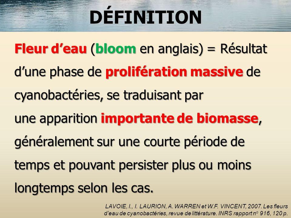 DÉFINITION Fleur d'eau (bloom en anglais) = Résultat d'une phase de prolifération massive de cyanobactéries, se traduisant par.