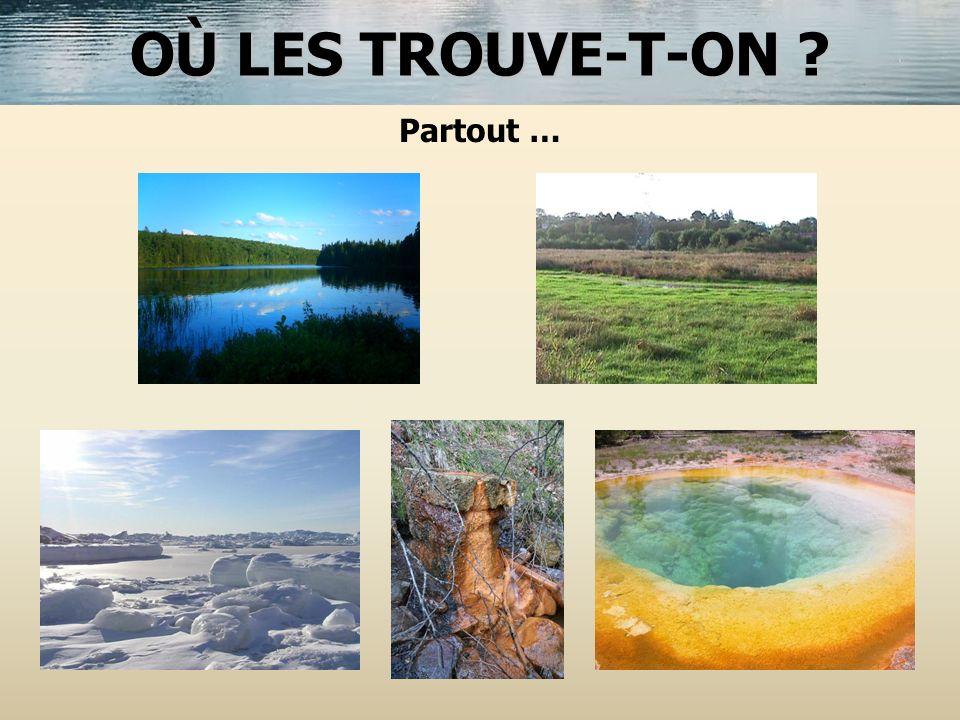 OÙ LES TROUVE-T-ON Partout …