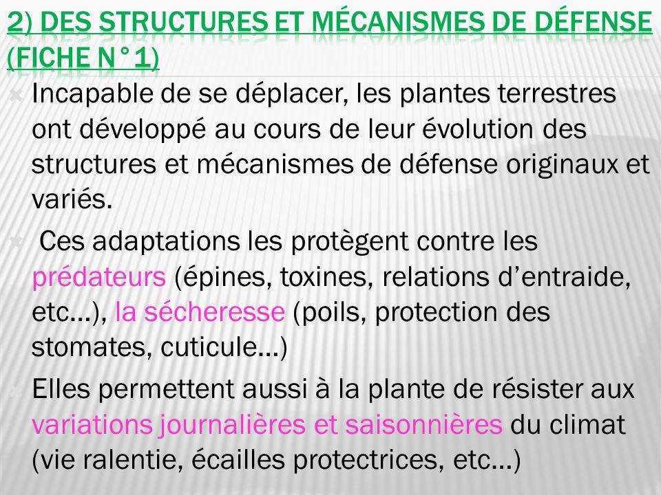 2) Des structures et mécanismes de défense (fiche n°1)