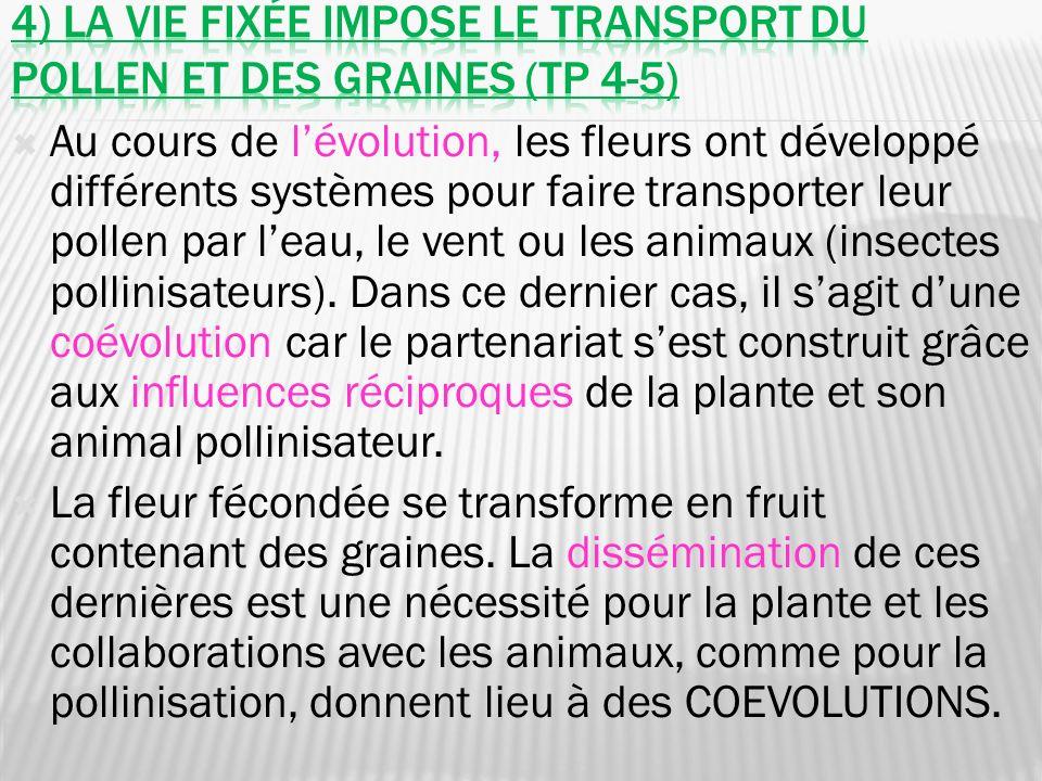 4) La vie fixée impose le transport du pollen et des graines (tp 4-5)
