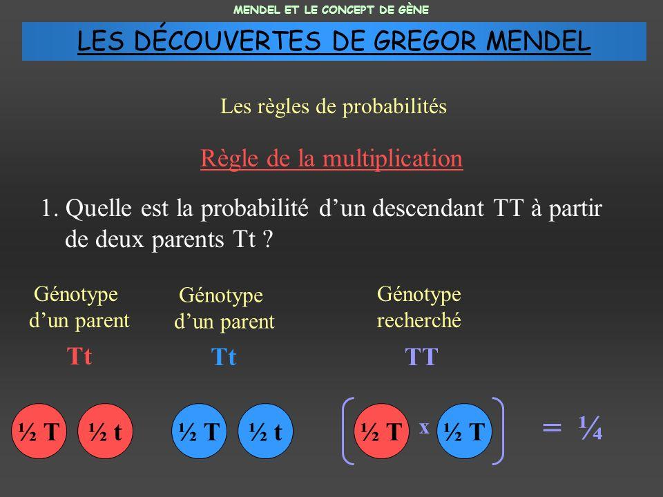 = ¼ LES DÉCOUVERTES DE GREGOR MENDEL Règle de la multiplication