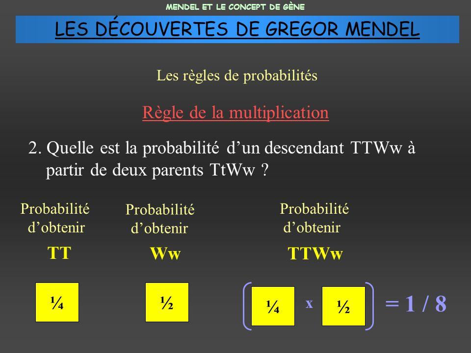 = 1 / 8 LES DÉCOUVERTES DE GREGOR MENDEL Règle de la multiplication