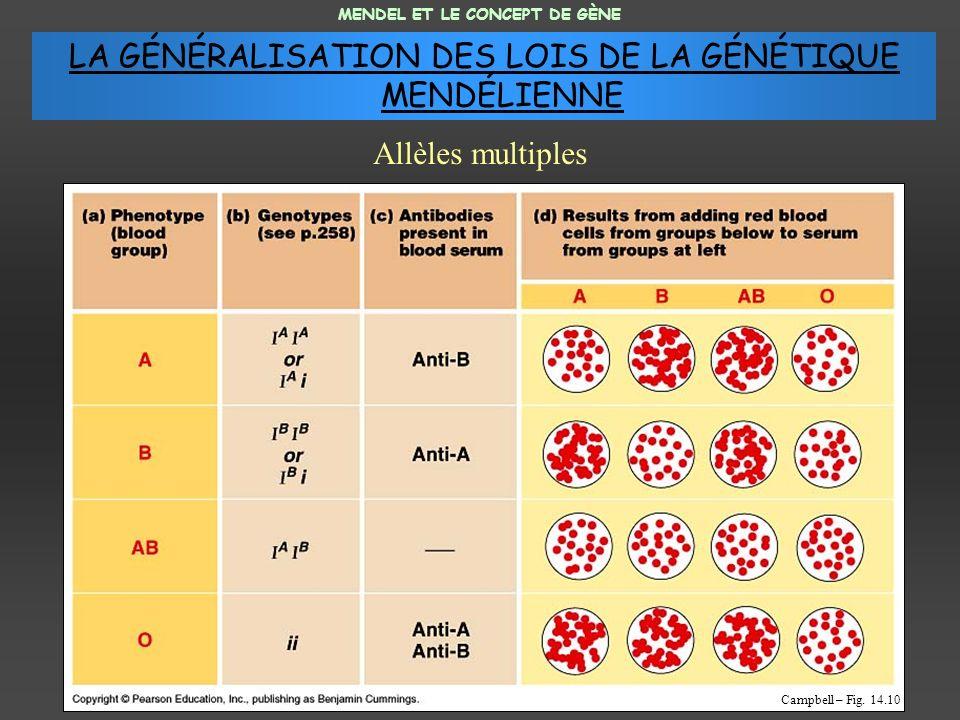 LA GÉNÉRALISATION DES LOIS DE LA GÉNÉTIQUE MENDÉLIENNE