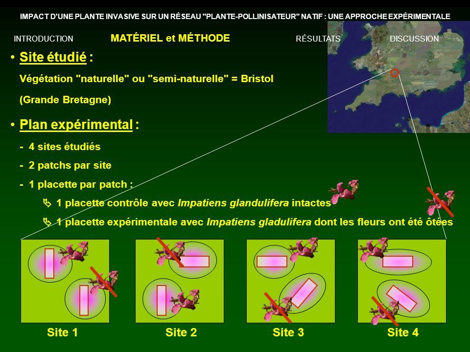 Site étudié : Plan expérimental : Site 1 Site 2 Site 3 Site 4