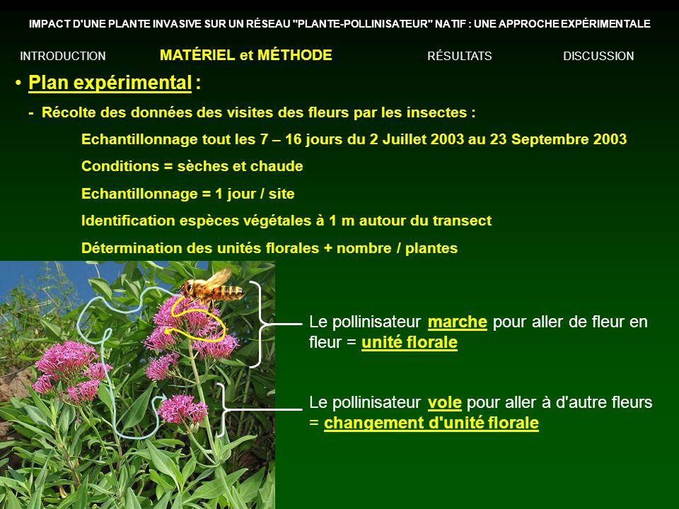 IMPACT D UNE PLANTE INVASIVE SUR UN RÉSEAU PLANTE-POLLINISATEUR NATIF : UNE APPROCHE EXPÉRIMENTALE