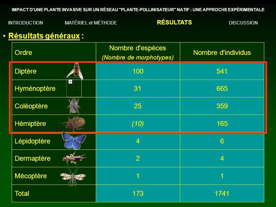 (Nombre de morphotypes)