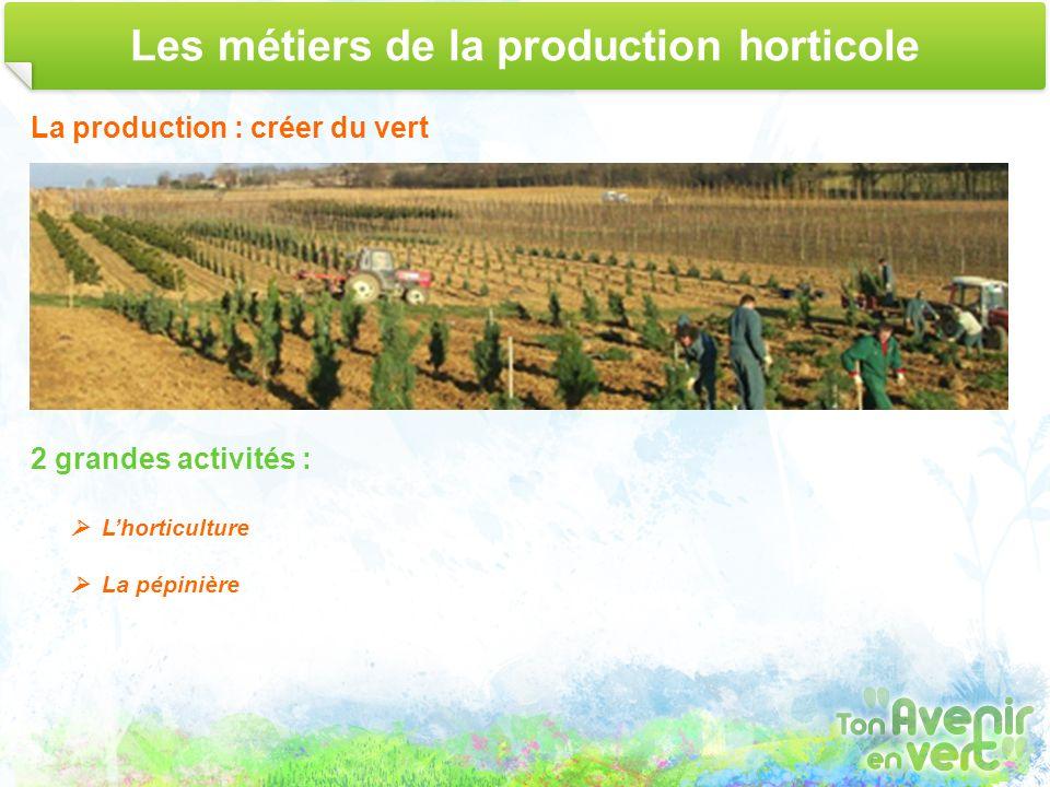 Les métiers de la production horticole