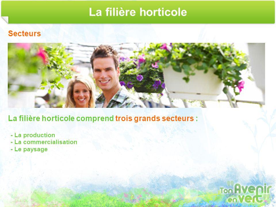 La filière horticole Secteurs
