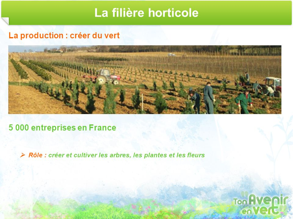 La filière horticole La production : créer du vert
