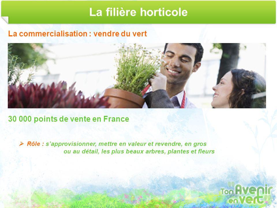 La filière horticole La commercialisation : vendre du vert