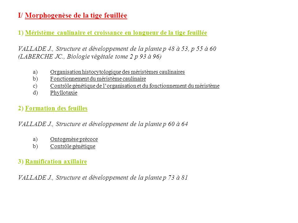 I/ Morphogenèse de la tige feuillée