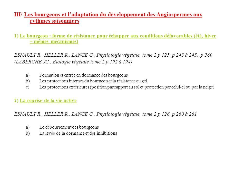 III/ Les bourgeons et l'adaptation du développement des Angiospermes aux rythmes saisonniers