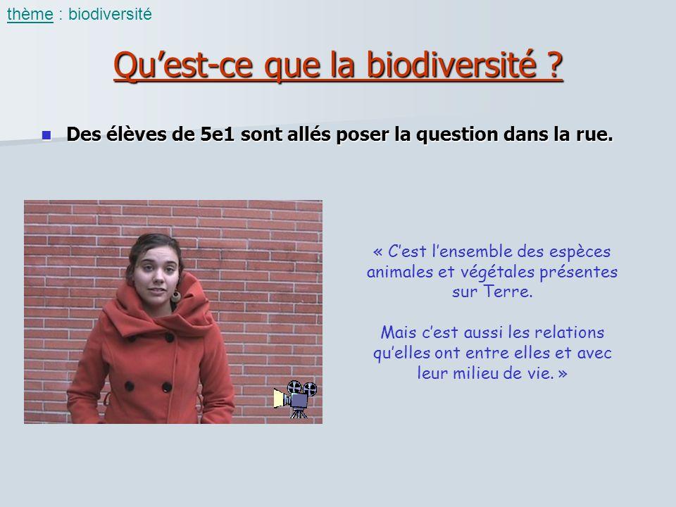 Qu'est-ce que la biodiversité