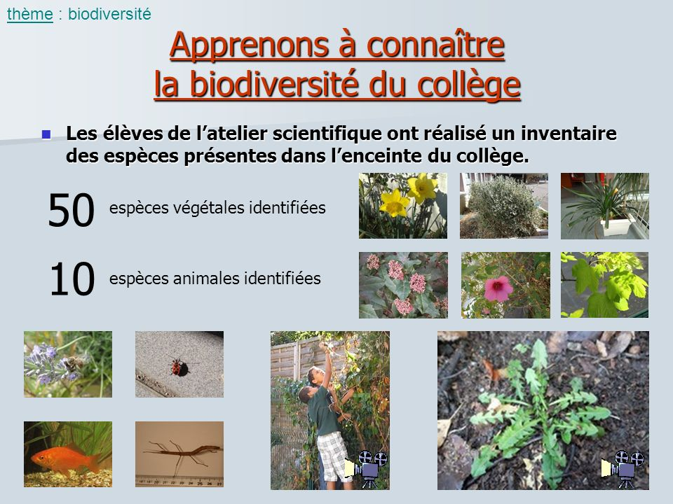 Apprenons à connaître la biodiversité du collège