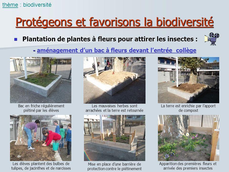 Protégeons et favorisons la biodiversité