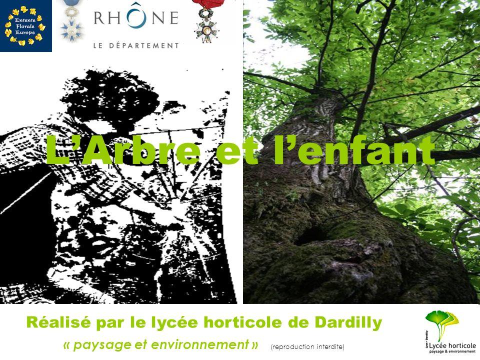 L'Arbre et l'enfant Réalisé par le lycée horticole de Dardilly « paysage et environnement » (reproduction interdite)