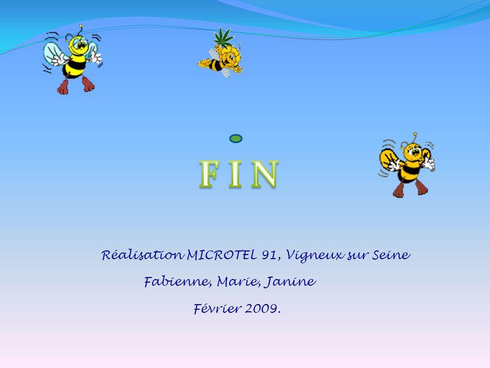 F I N Réalisation MICROTEL 91, Vigneux sur Seine