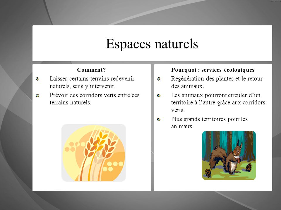 Pourquoi : services écologiques
