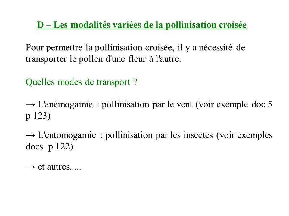 D – Les modalités variées de la pollinisation croisée