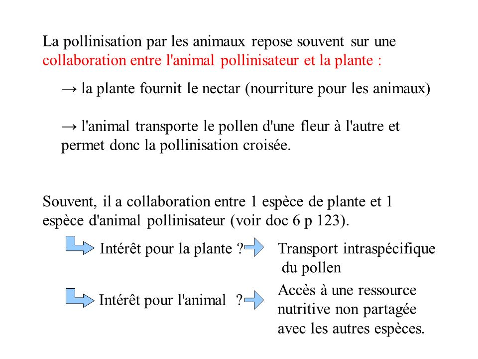 La pollinisation par les animaux repose souvent sur une collaboration entre l animal pollinisateur et la plante :