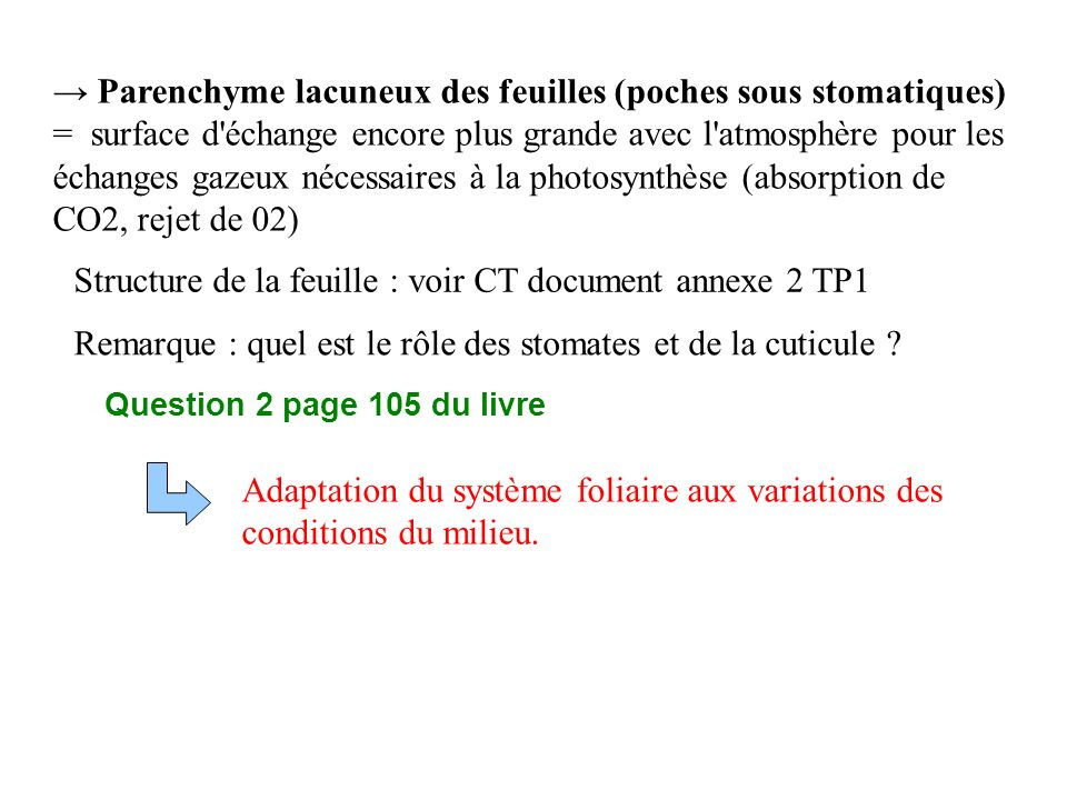 Structure de la feuille : voir CT document annexe 2 TP1